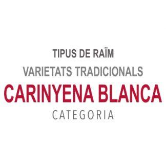 Carinyena Blanca
