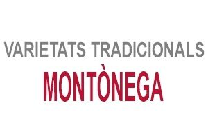Montònega