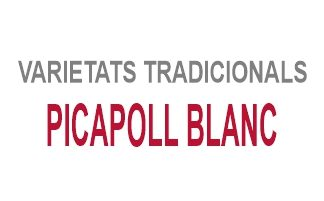 Picapoll Blanc