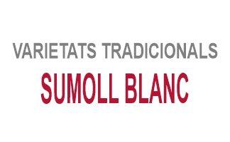 Sumoll Blanc